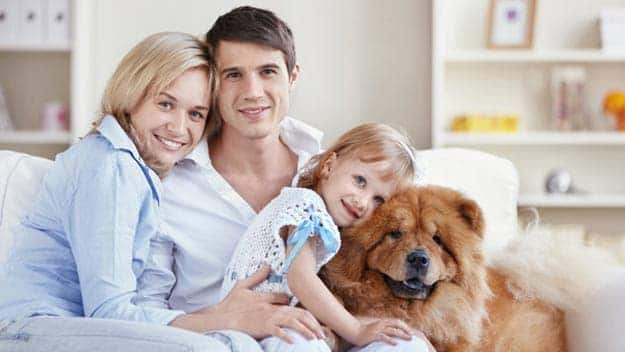 Wills & Trusts dog-young-family Direct Wills Brent Park